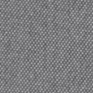 tetra grey